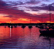 Harbor Sunset of Beautiful San Diego by Troy Gooch