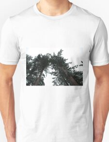 Big and Tall Unisex T-Shirt