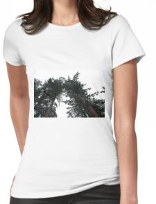 Big and Tall Womens Fitted T-Shirt