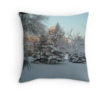 Snow Storm 1/12/11 Throw Pillow