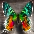 fractalius butterfly by marianne troia