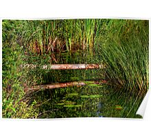 Reflections on the Fen (HDR) Poster