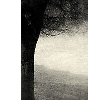 Shade Photographic Print