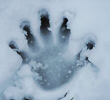 Handprint In The Snow by Jonice