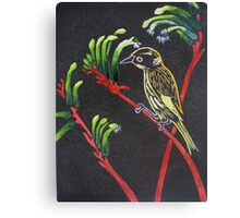 Kangaroo Paw Western Australia Canvas Print
