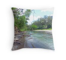 Tropical Estuary - Port Resolution, Tanna Throw Pillow
