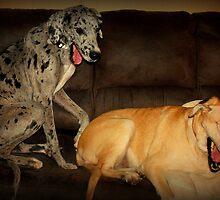 Pair o' Sorry Pups! by Sharksladie
