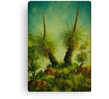 Grass trees in the Australian landscape Canvas Print