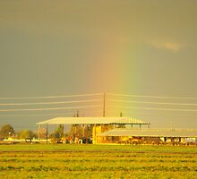 Rainbow Over Troubled Skies by Crystal Fobare