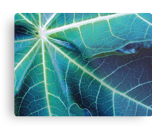 Blue Papaya Metal Print
