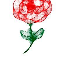 Scribbler Rose by SharonD