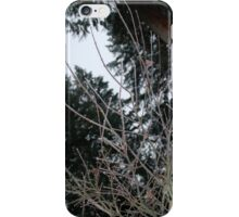 Wet + Cold iPhone Case/Skin