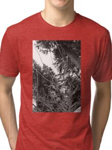 Icy Tri-blend T-Shirt