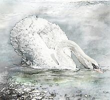 swan by cristina