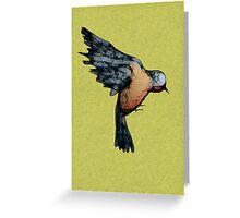Scribbler Bird Greeting Card