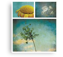 Collection ~ Nature in colour Canvas Print