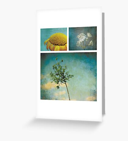 Collection ~ Nature in colour Greeting Card