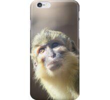 Baby Monkey iPhone Case/Skin