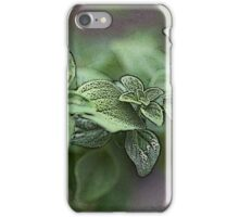 Oregano 2 iPhone Case/Skin
