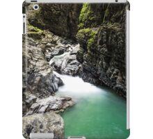 Ueble Schlucht Austria X iPad Case/Skin