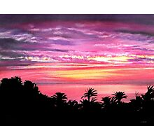 Pink Paradise Photographic Print