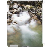 Ueble Schlucht Austria V iPad Case/Skin