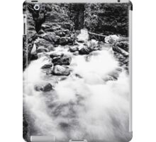 Ueble Schlucht Austria IV B&W iPad Case/Skin