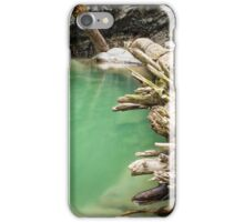 Ueble Schlucht Austria III iPhone Case/Skin
