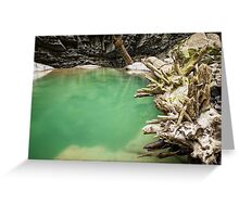 Ueble Schlucht Austria III Greeting Card