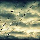 Stormy Skies.. by Kate Towers IPA