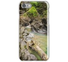 Ueble Schlucht Austria I iPhone Case/Skin