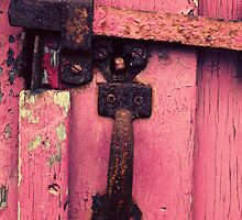 pink door by Shirley Bittner