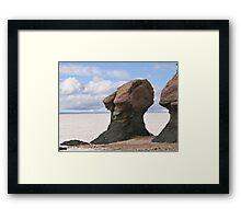 The old wise one Framed Print
