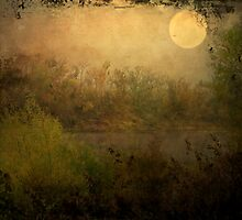 Full Moon Over the River by DottieDees