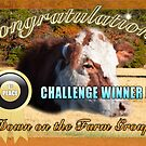 Banner for Down on the Farm 1st place winner by TJ Baccari Photography