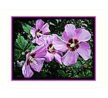 Purple Flora Art Print