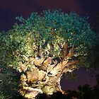 WDW Animal Kingdom Tree of Life by chewi