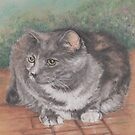 Precious Cat by Pam Humbargar