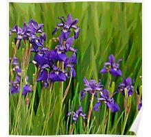 Spring Migration Poster