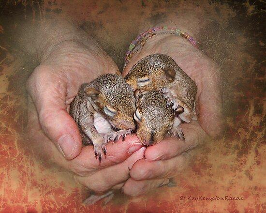 My Heart's In My Hands by Kay Kempton Raade