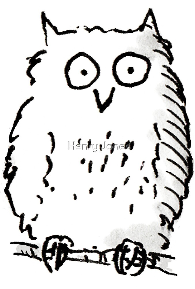 Big Owl print by LordOtter