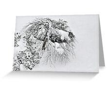 Shaggy Snow Dog Greeting Card