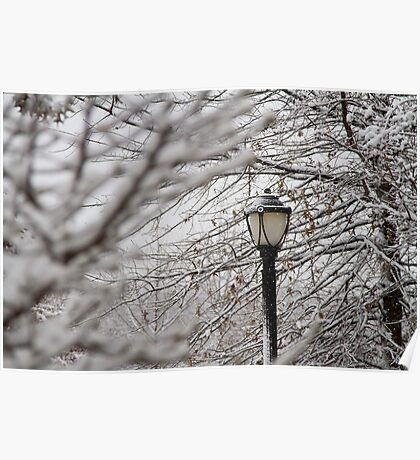 Light Snow Poster
