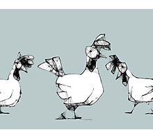 scribbler hens Photographic Print