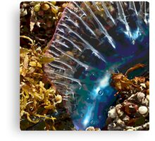 Inflated Ego Canvas Print