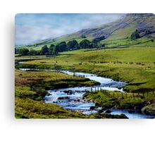 A View of a Dale Canvas Print