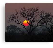 Sunset At Londolozi Canvas Print