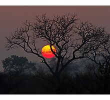 Sunset At Londolozi Photographic Print