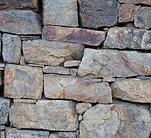 Fallen Stones by Bree Waltman