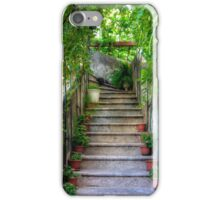 Potted plants and a dog on the steps iPhone Case/Skin